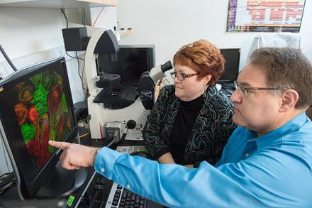 Lori Isom, Ph.D., and Jack Parent, M.D., lead the University of Michigan team that will explore the heart-brain connection in sudden death among patients with a form of epilepsy called Dravet syndrome. - Credit UofM