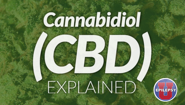CBD EXPLAINED: Study shows how cannabidiol works within cells
