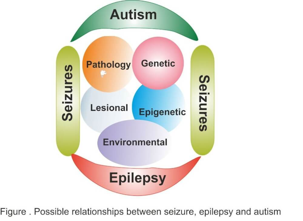 the causes symptoms and characteristics of autism a brain disability Approximately one in 10 persons with autistic disorder has some savant skills   some other form of developmental disability, mental retardation or brain injury or  disease  while autistic disorder and asperger's share many characteristics in.