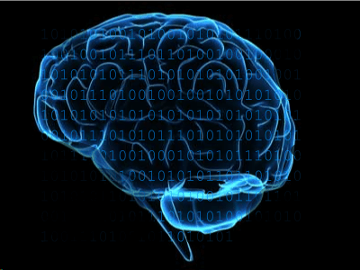brain code.jpg