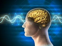 Weak Electrical Field May Spread Brain Waves Linked To Memory And Epilepsy