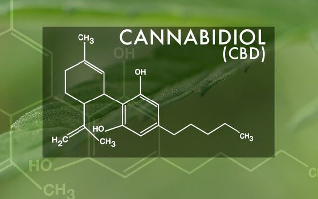 CBD FOR EPILEPSY: To be available in Florida NEXT WEEK!