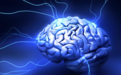 Study shows continuous electrical stimulation suppresses seizures in patients with epilepsy