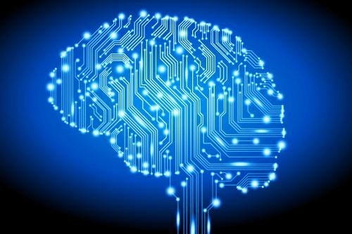 brain_circuits_500