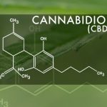 cbd-oil-for-epilepsy