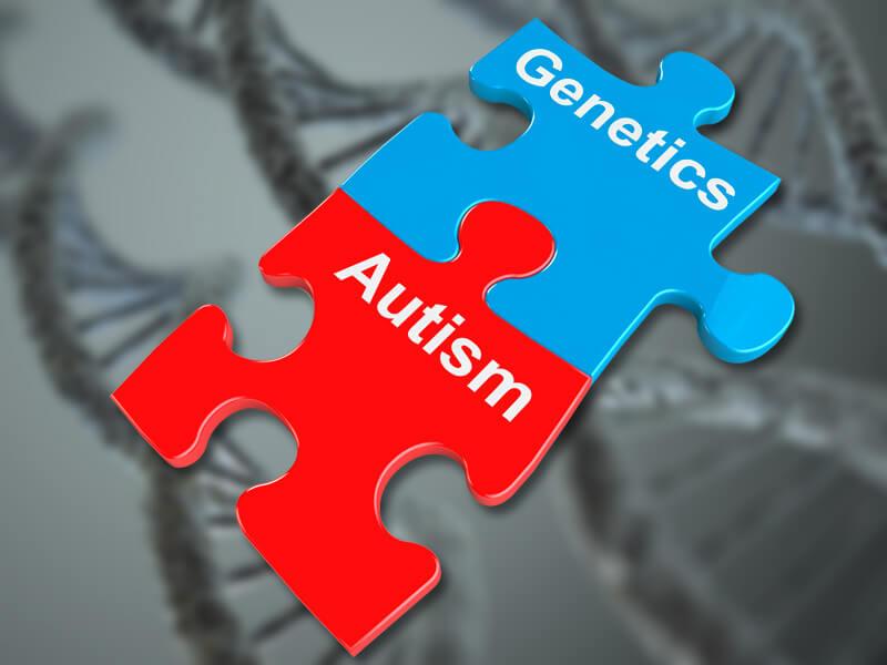 World's largest autism genome database shines new light on many 'autisms'