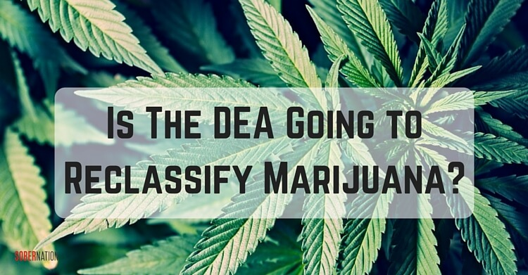 The DEA just gave a big boost to a cannabis-based seizure drug