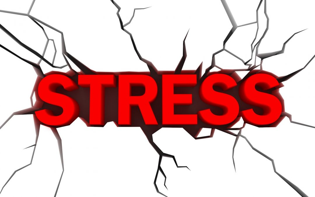 Stress may trigger seizure for epilepsy patients