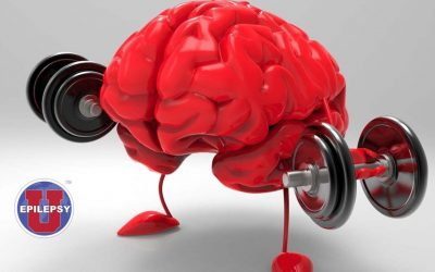 Estrogen-mediated brain protection directly linked to intake of of fatty acids found in oils