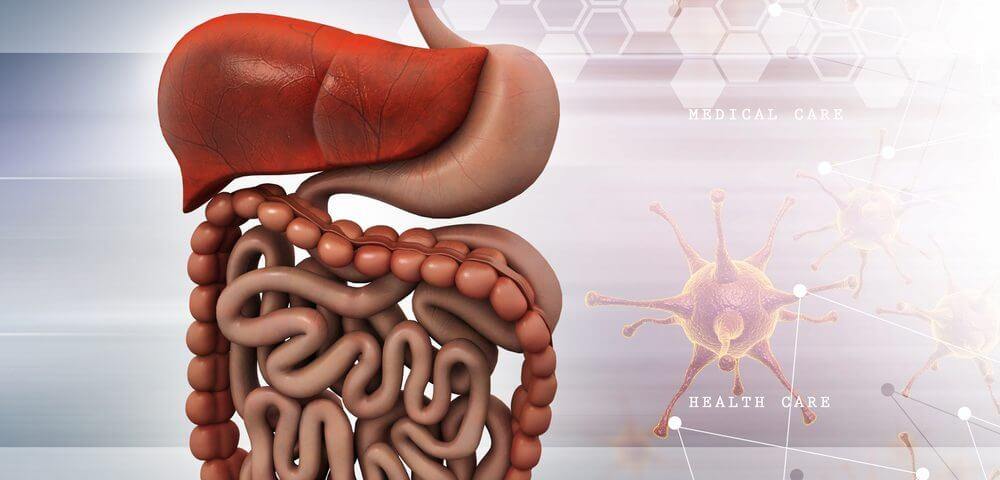 Angelman Patients Frequently Have Gastrointestinal Problems, Study Finds