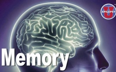 MIT tackles the science behind long-term memories — and how they affect brain disorders