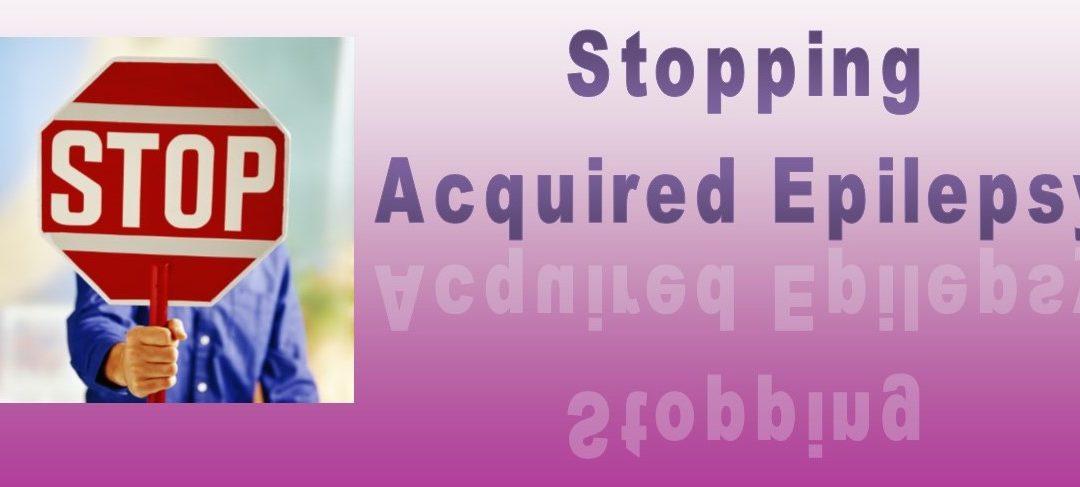 Stopping Epilepsy Before It Starts?