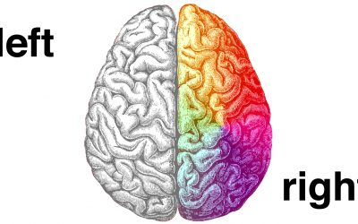 Left brain vs. right brain: Fact and fiction