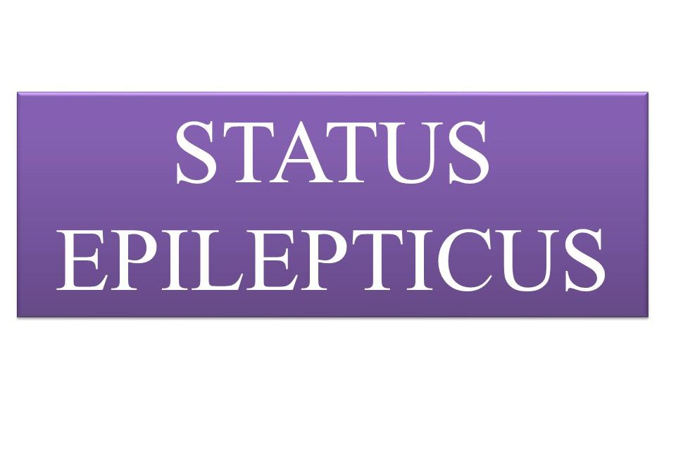 Status Epilepticus Risk Factors and Complications