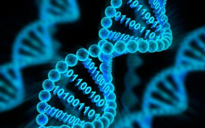 Scientists have developed tools to determine the genetic causes of early epilepsy