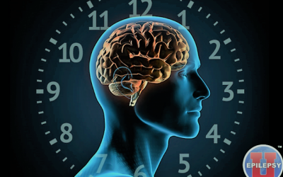 Circadian and circaseptan rhythms in human epilepsy