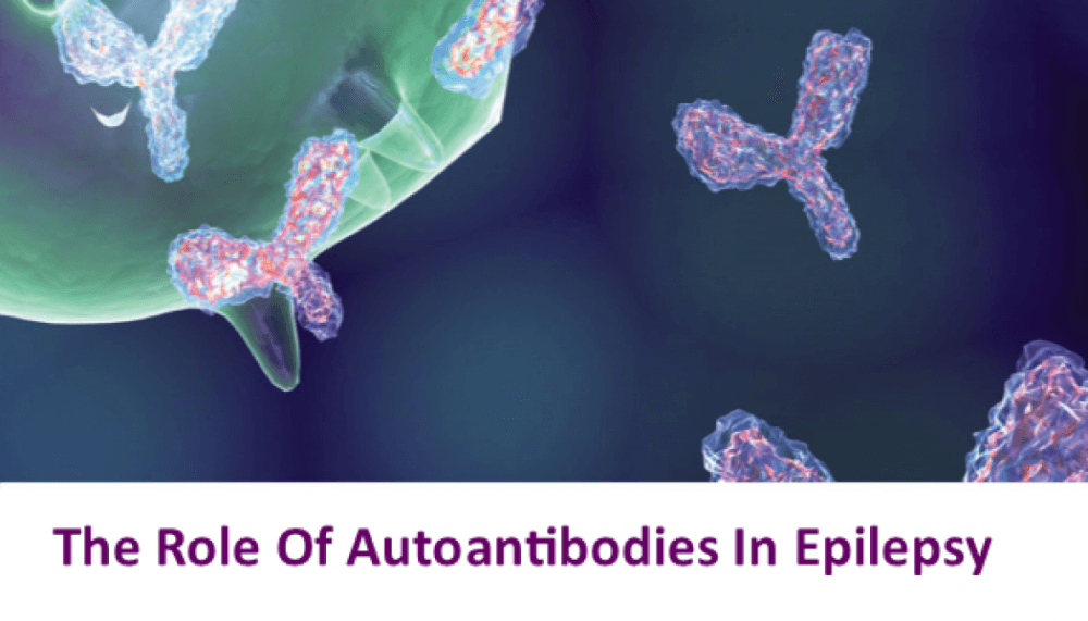 The Role Of Autoantibodies In Epilepsy