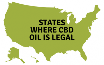 Is CBD Oil Legal? State-By-State and Future Legality.