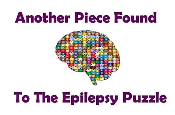 Epilepsy: Triangular relationship in the brain Researchers decipher complex interaction in brain's network