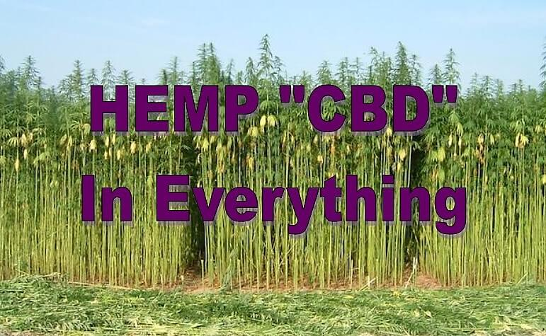 "As the Hemp ""CBD?"" ood Craze Grows, States and Cities Unsure of How to Regulate"